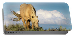 Palomino Wild Stallion In The Evening Light Portable Battery Charger