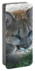Portable Battery Charger featuring the photograph Palus by Laddie Halupa
