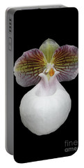 Paphiopedilum Micranthum Eburneum Orchid Portable Battery Charger