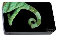 Parson Chameleon, Calumma Parsoni On Black Background, Top View Portable Battery Charger by Sergey Taran