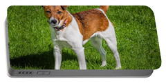 Portable Battery Charger featuring the photograph Parson Jack Russell by Nick Bywater