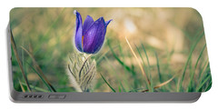Pasque Flower Portable Battery Charger