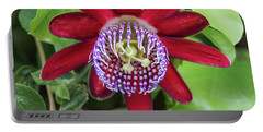 Passiflora Ruby Glow. Passion Flower Portable Battery Charger