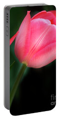 Pastel Tulips Portable Battery Charger