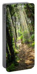 Path In Sunlit Forest Portable Battery Charger