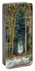 Path Through Bergherbos Forest Portable Battery Charger