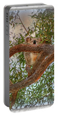 Portable Battery Charger featuring the photograph Patience Brings Koalas by Hanny Heim