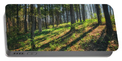Peaceful Forest 4 - Spring At Retzer Nature Center Portable Battery Charger by Jennifer Rondinelli Reilly - Fine Art Photography