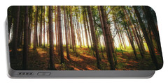 Peaceful Wisconsin Forest 2 - Spring At Retzer Nature Center Portable Battery Charger by Jennifer Rondinelli Reilly - Fine Art Photography