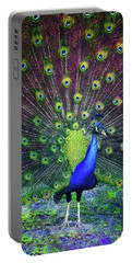 Peacock Series 9801 Portable Battery Charger