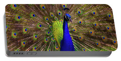 Peacock Showing Breeding Plumage In Jupiter, Florida Portable Battery Charger by Justin Kelefas