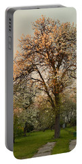 Pear Spring Sunrise Portable Battery Charger by Henryk Gorecki
