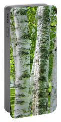 Portable Battery Charger featuring the photograph Peek A Boo Birch by Greg Fortier