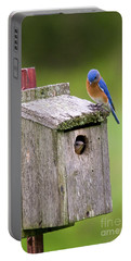 Peek A Boo Blue Portable Battery Charger