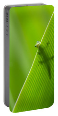 Peek A Boo Gecko Portable Battery Charger
