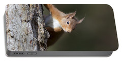 Peekaboo - Red Squirrel #29 Portable Battery Charger