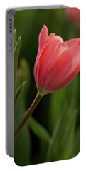 Portable Battery Charger featuring the photograph Peeking Tulip by Mary Jo Allen