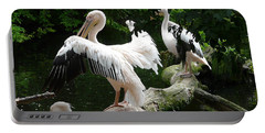 Pelican Hideaway Portable Battery Charger by Valerie Ornstein