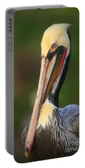 Portable Battery Charger featuring the photograph Pelican In Green by John F Tsumas