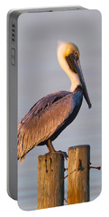Pelican Perch Portable Battery Charger