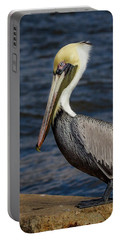 Portable Battery Charger featuring the photograph Pelican Profile 2 by Jean Noren
