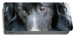 Pensive Border Collie Portable Battery Charger