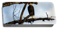 Portable Battery Charger featuring the photograph Perched Bald Eagle by Sadie Reneau