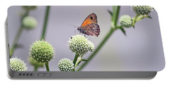 Perched Butterfly No. 255-1 Portable Battery Charger by Sandy Taylor