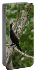 Portable Battery Charger featuring the photograph Perched Double-crested Cormorant by Steven Santamour