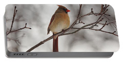Perched Female Red Cardinal Portable Battery Charger