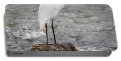 Portable Battery Charger featuring the photograph Perched Great Egret by Ricky L Jones