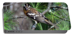 Perched In The White Pine Portable Battery Charger
