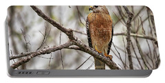 Perched Red Shouldered Hawk Portable Battery Charger