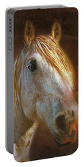 Percheron  Portable Battery Charger