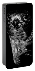 Peregrin Falcon Portable Battery Charger