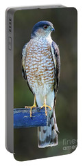 Sharp-shinned Hawk Portable Battery Charger