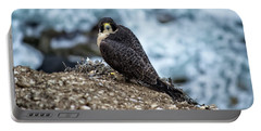 Peregrine Falcon - Here's Looking At You Portable Battery Charger