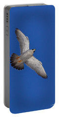 Peregrine Falcon I Portable Battery Charger