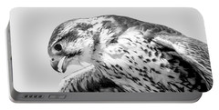 Peregrine Falcon In Black And White Portable Battery Charger