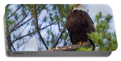 Perplexed Eagle Portable Battery Charger