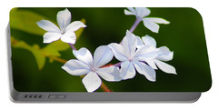 Petite Plumbago Blossoms Portable Battery Charger