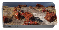 Portable Battery Charger featuring the photograph Petrified Forest National Park by James Peterson