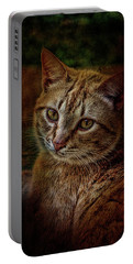 Pets Fat Cat Portrait 2 Portable Battery Charger