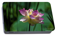 Portable Battery Charger featuring the photograph Petty Pink Lotus by Paul Mashburn