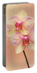 Phalaenopsis Moth Orchids #2 V2 Portable Battery Charger