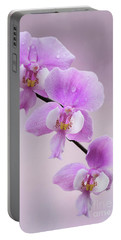 Phalaenopsis Schilleriana Fragrant Butterfly Orchid V2 Portable Battery Charger