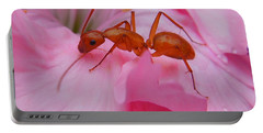 Pharaoh Ant Portable Battery Charger