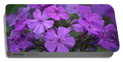 Phlox Portable Battery Charger