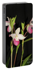 Phragmipedium Cardinale Wacousta Orchid Portable Battery Charger