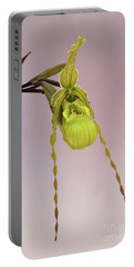 Phragmipedium Richteri Orchid V2 Portable Battery Charger